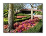 Flower Garden Outside 'The Land'Epcot