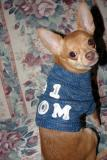 Pepe, Modeling a Sweater