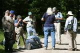 most of the group watching the Early Hairstreak