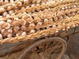 Garlic cart