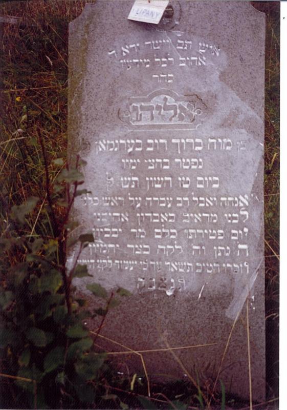 Eliyahu son of R Baruch Dov BERGMAN