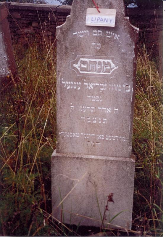 Menachem son of Gabriel ENGEL