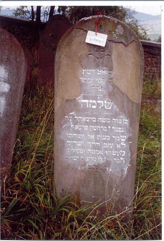 Shlomo son of R Moshe BAUMOHL