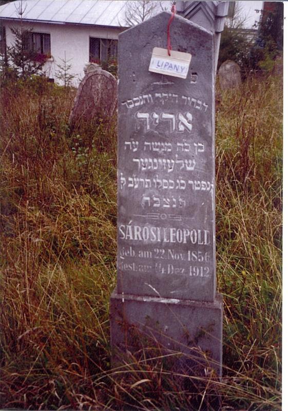 Arid?* son of Moshe SCHLESINGER