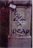 Yosef the son of Tzvi  FRIEDMAN Died 21 Tevet 5662 21 December 1901