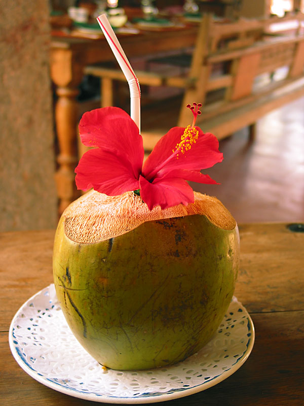 Flower-Coconut-Drink.jpg