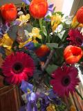 flowers and lorikeet