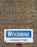 Woodbineby Jon Mold