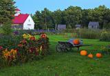 Wheebarrow Landscape