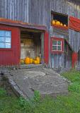 pumpkins-up--down-01.jpg
