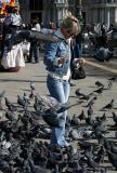 41506c - Pigeons -St. Mark's Square