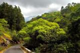 Kodai Road