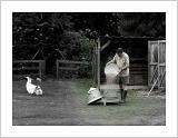 Burridge Farm, UK