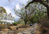 Metairie Club Gardens After Hurricane Katrina
