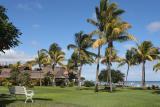 Mauritius - Palm Trees & Chair