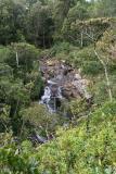 Mauritius - Alexandra River (Riviere Noire National Park)