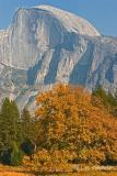 October in Yosemite Valley