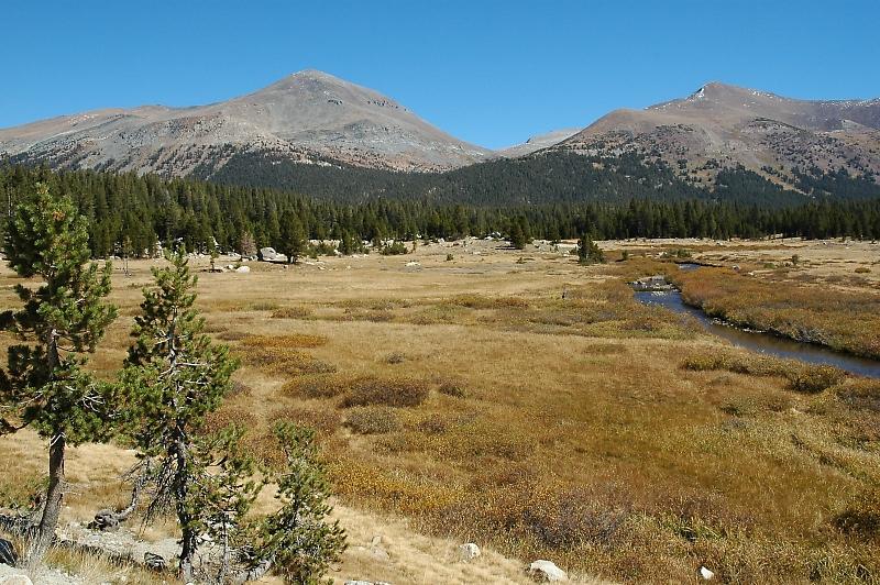 Mt. Dana and Mt. Gibbs.