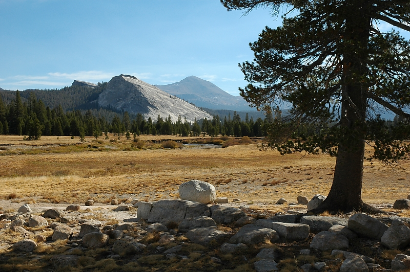 Lembert Dome and Mt. Dana