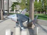 A Hand-Some Shark