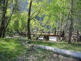 Sentinel Footbridge