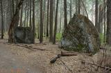 Tenaya Creek Trail