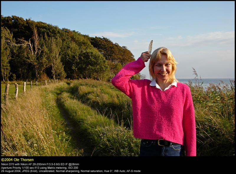 Aalholm Skov 20040829 0042 PS web.jpg