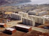 okpo_1982
