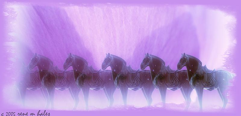 : horses & peonies :
