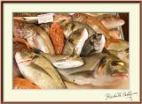 Fish Market, St Tropez