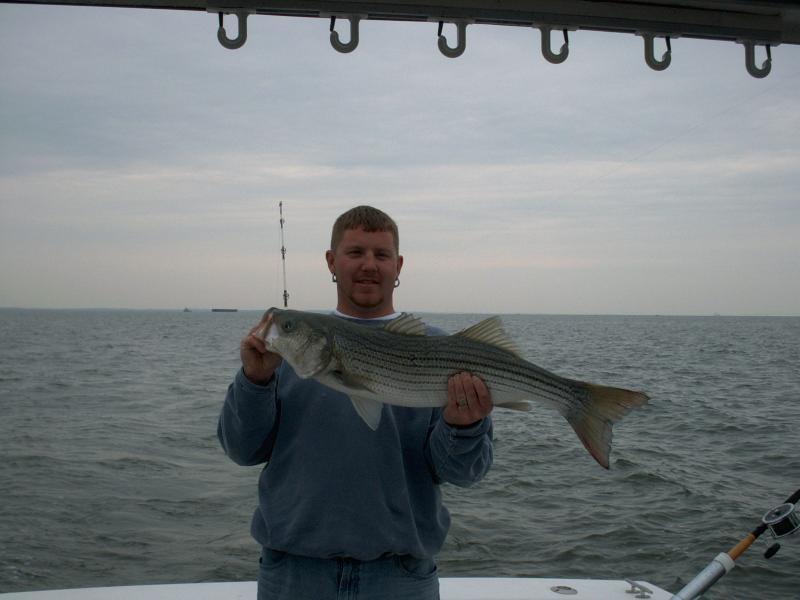 fish42905.jpg