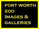 Fort Worth Zoo Images.jpg