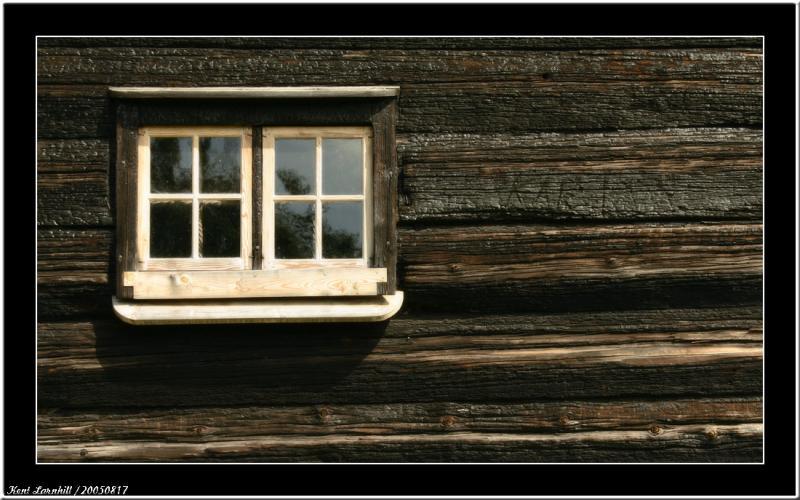 20050817 - Dark Wood -