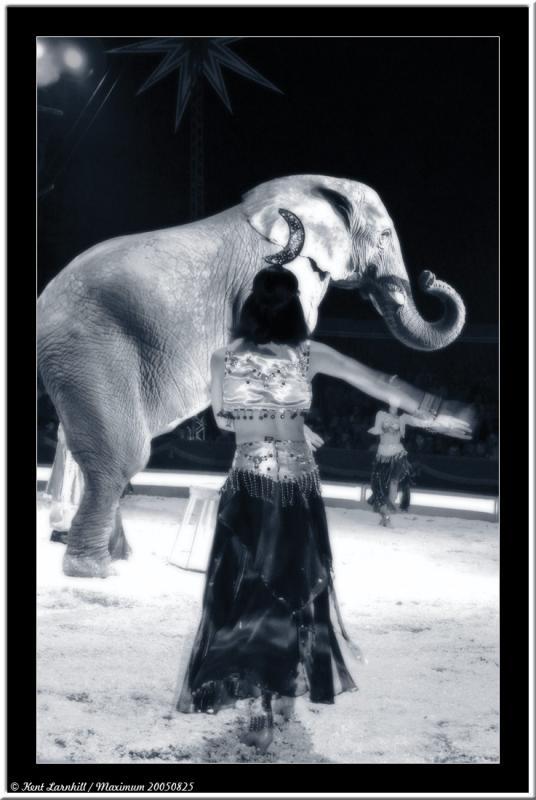 20050825 - Circus Maximum -