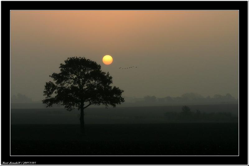 20051101 - Morning sun -