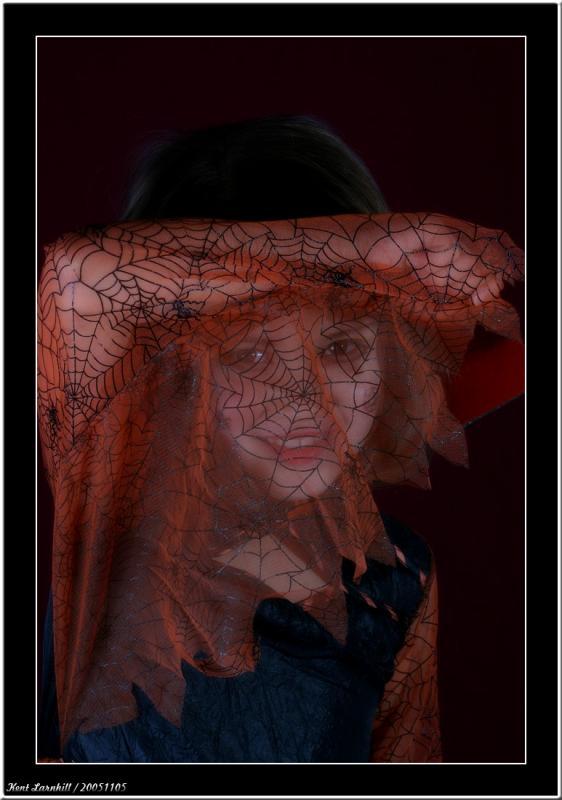 20051105 - Spider girl -