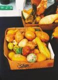 gourds3.JPG