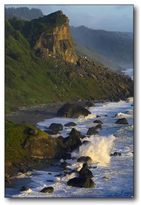 Coastal Waves : Redwoods Workshop