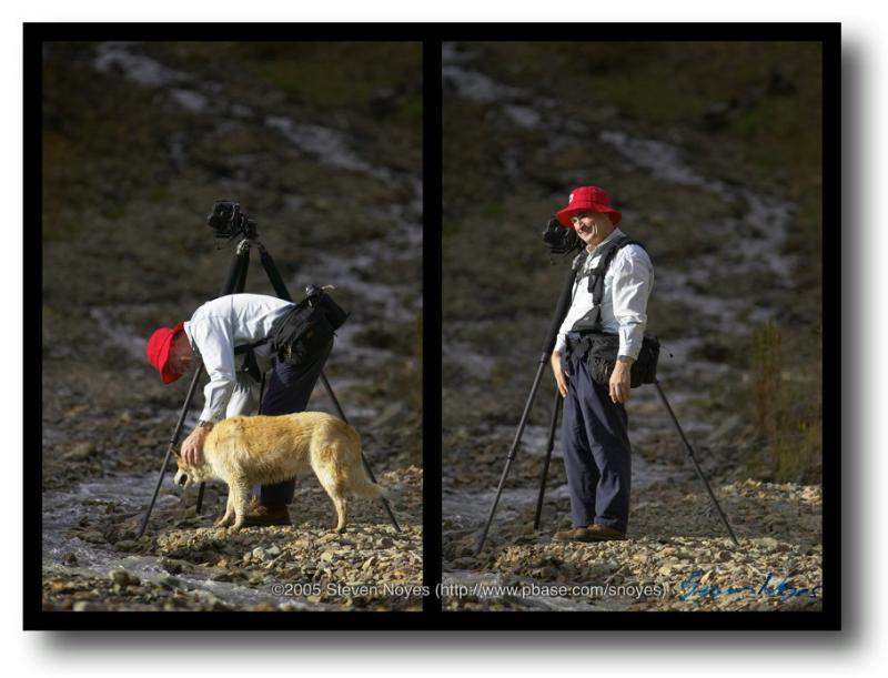 Colorado : Ophir Canyon : Dog Fix