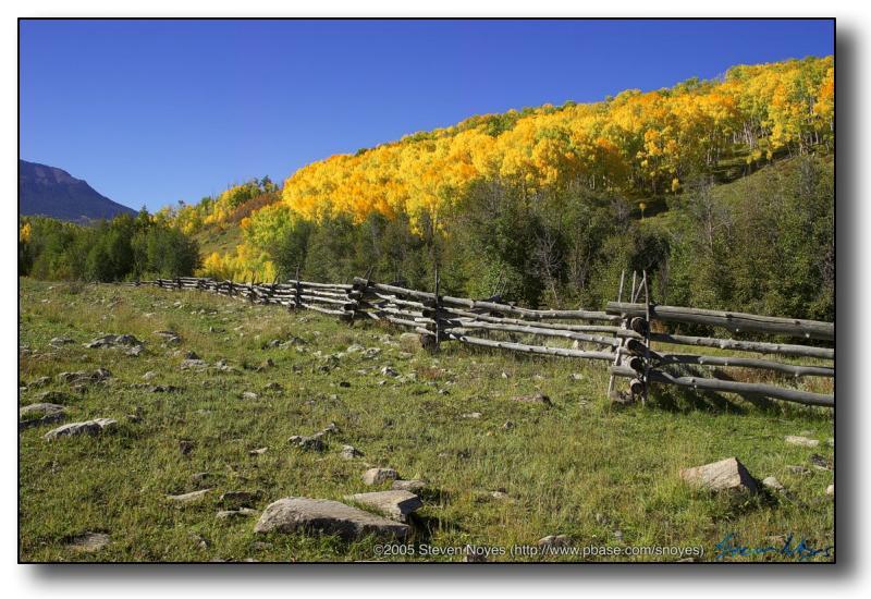 Colorado : Road Kill : Wood Fence