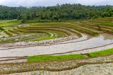 rural W Java