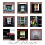 Beacon Hill Windowboxes