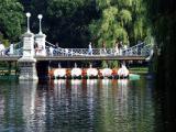 Boston's Public Garden