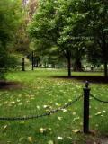 Autumn, Public Garden IV