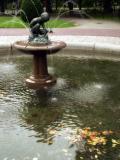 Autumn, Public Garden VI