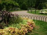 Autumn, Public Garden VII