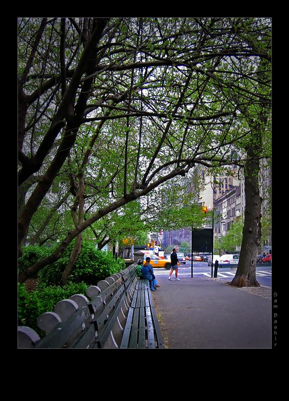 New York 2005 Crop-Burn