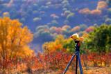 Autumnal Bashang 壩上秋獮