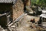 im Dorf / in the village 2