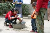 Hundereinigung / dog cleaning
